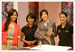 Ntv 7 Bella 'Live' Show 11am 28 June 2012 (Cat Grooming)